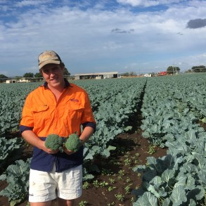 Qualipac's new recruit, Sam Adams with fresh broccoli from one of the farms in the Lockyer Valley