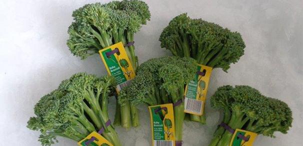 Baby Broccoli Ready To Go